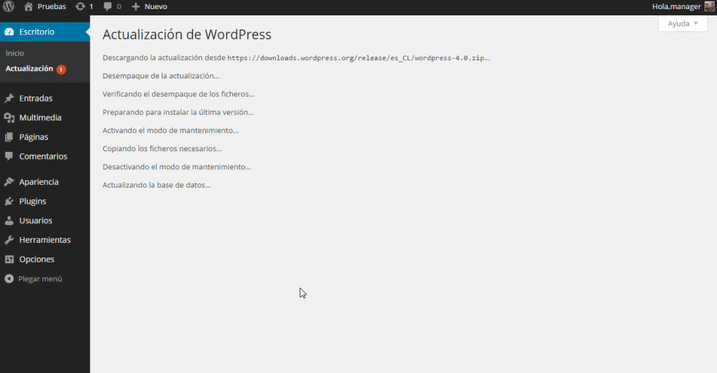 Actualizaciones de WordPress ‹ Pruebas — WordPress