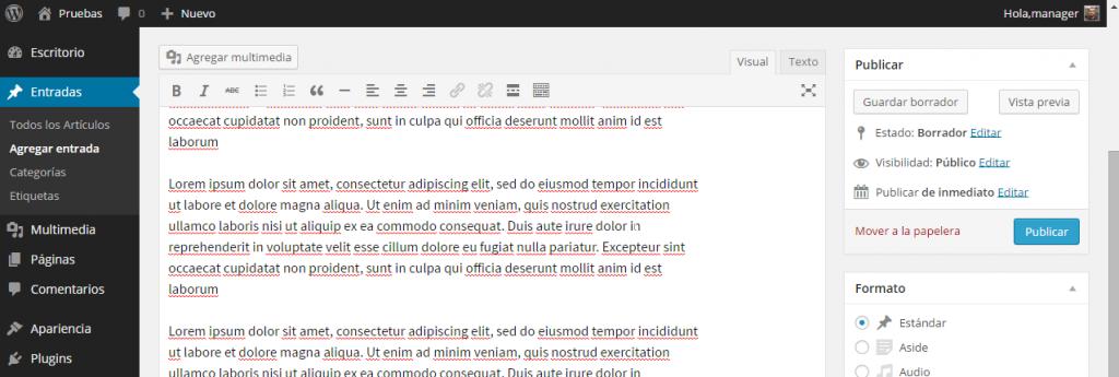 Barra de edición - Agregar nuevo artículo ‹ Pruebas — WordPress
