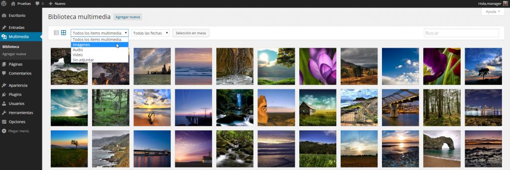 Biblioteca multimedia ‹ Pruebas — WordPress 4